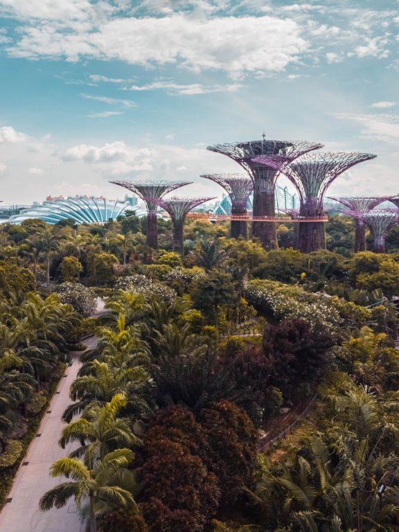 Qu'est-ce que l'architecture organique et quels en sont les contours?